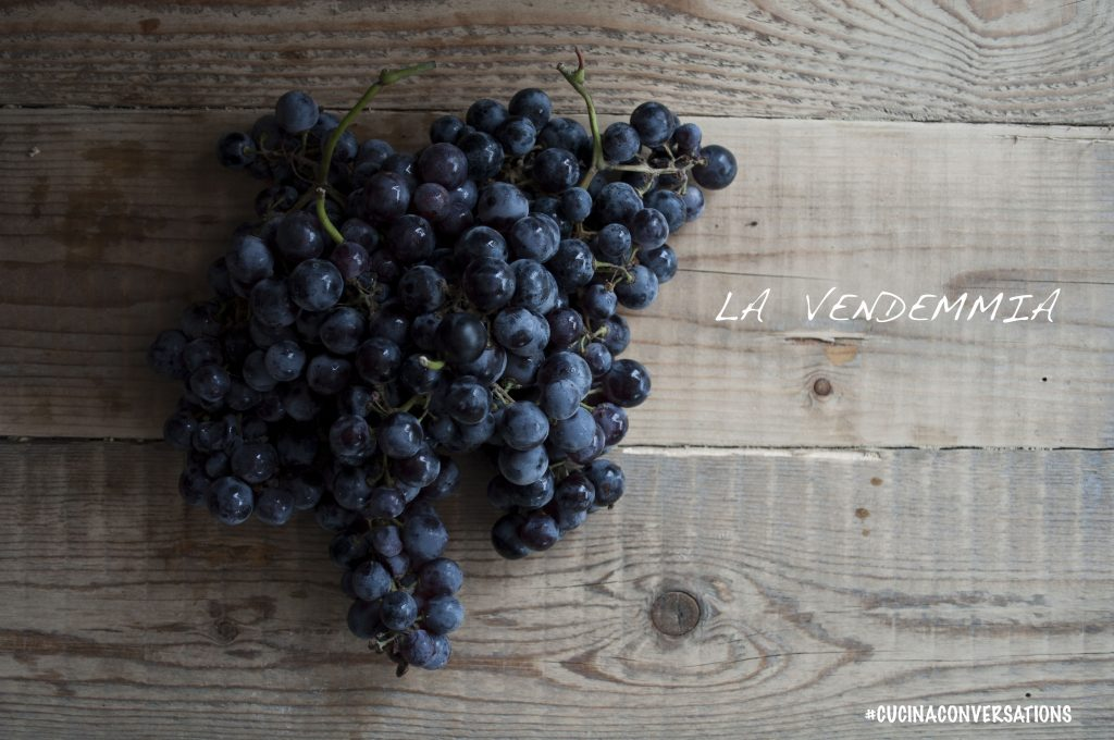 La Vendemmia - Cucina Conversations